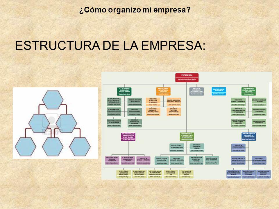 ESTRUCTURA DE LA EMPRESA: ¿Cómo organizo mi empresa?
