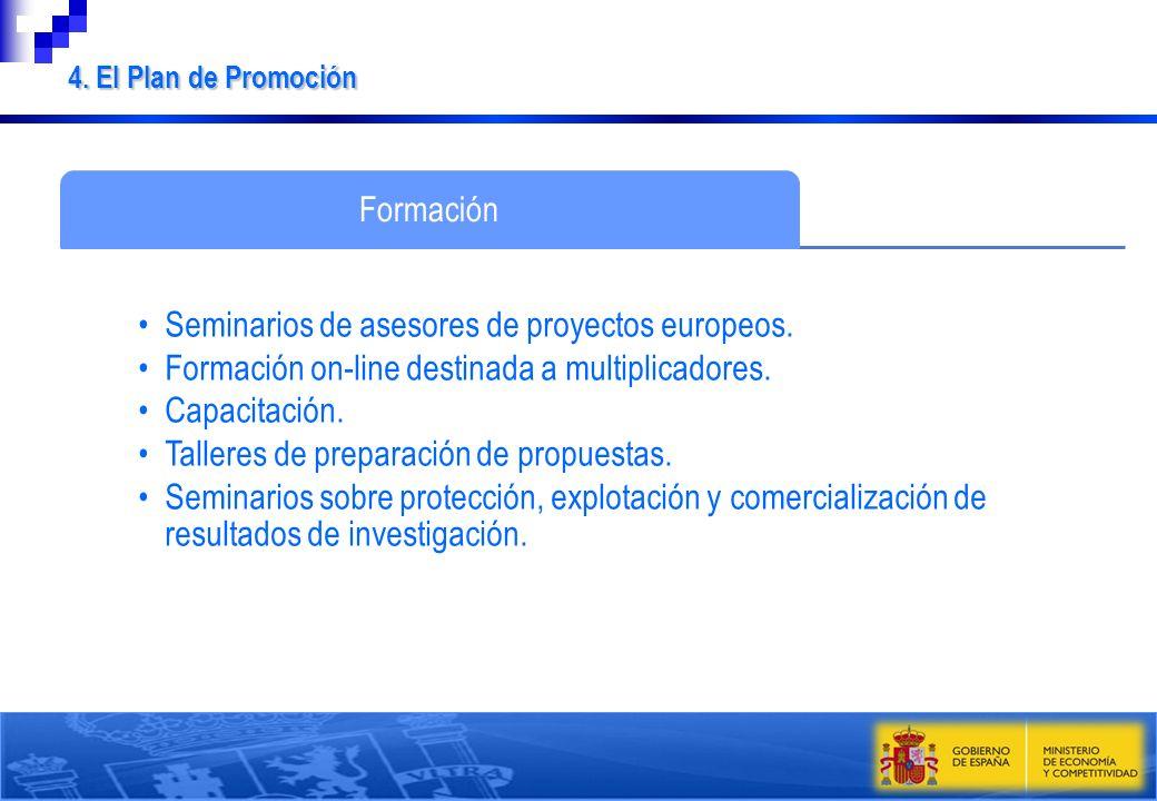 Formación Seminarios de asesores de proyectos europeos. Formación on-line destinada a multiplicadores. Capacitación. Talleres de preparación de propue