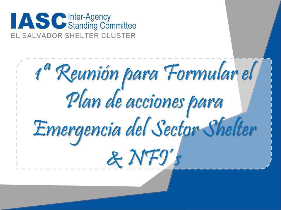 Revisión de la Estructura del Plan del Acción del Sector Shelter y NFI´s