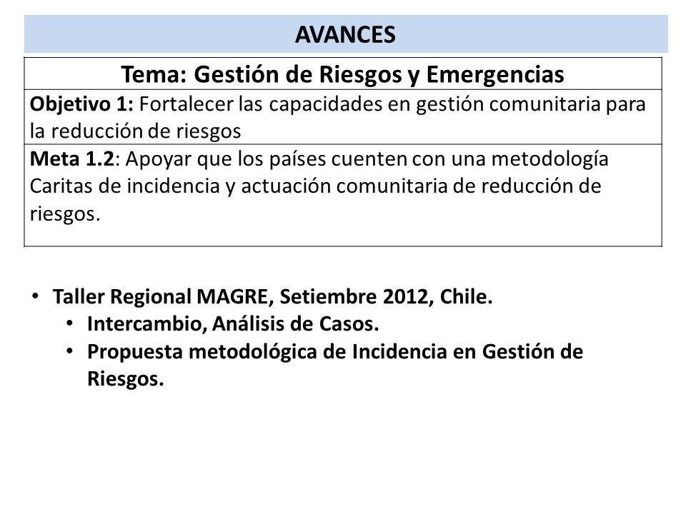 AVANCES Tema: Gestión de Riesgos y Emergencias Objetivo 1: Fortalecer las capacidades en gestión comunitaria para la reducción de riesgos Meta 1.2: Ap