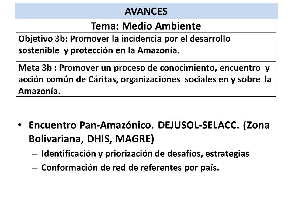 Encuentro Pan-Amazónico. DEJUSOL-SELACC. (Zona Bolivariana, DHIS, MAGRE) – Identificación y priorización de desafíos, estrategias – Conformación de re
