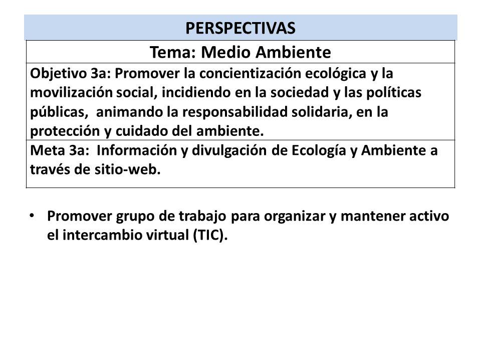 Promover grupo de trabajo para organizar y mantener activo el intercambio virtual (TIC). PERSPECTIVAS Tema: Medio Ambiente Objetivo 3a: Promover la co