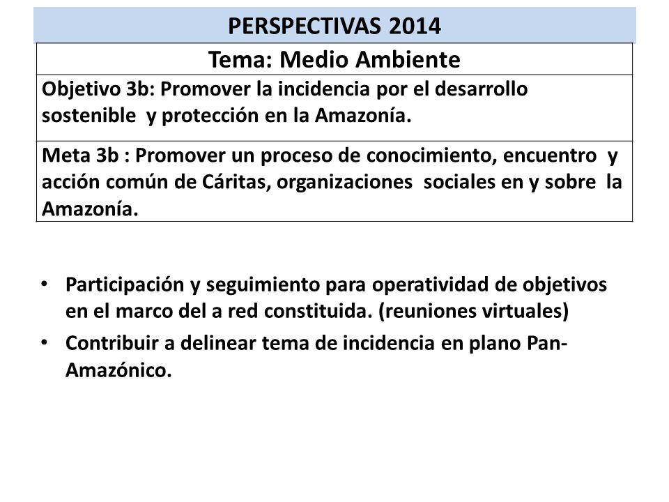 Participación y seguimiento para operatividad de objetivos en el marco del a red constituida. (reuniones virtuales) Contribuir a delinear tema de inci