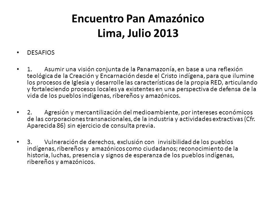Encuentro Pan Amazónico Lima, Julio 2013 DESAFIOS 1.Asumir una visión conjunta de la Panamazonía, en base a una reflexión teológica de la Creación y E