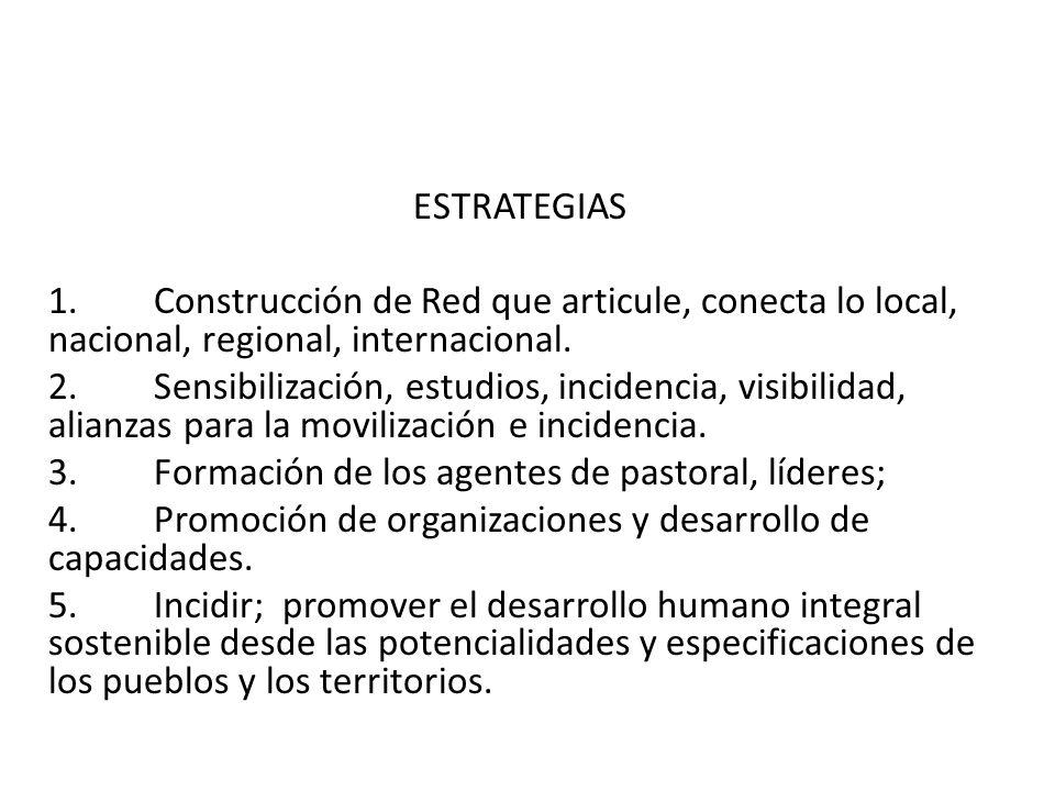 ESTRATEGIAS 1.Construcción de Red que articule, conecta lo local, nacional, regional, internacional. 2.Sensibilización, estudios, incidencia, visibili