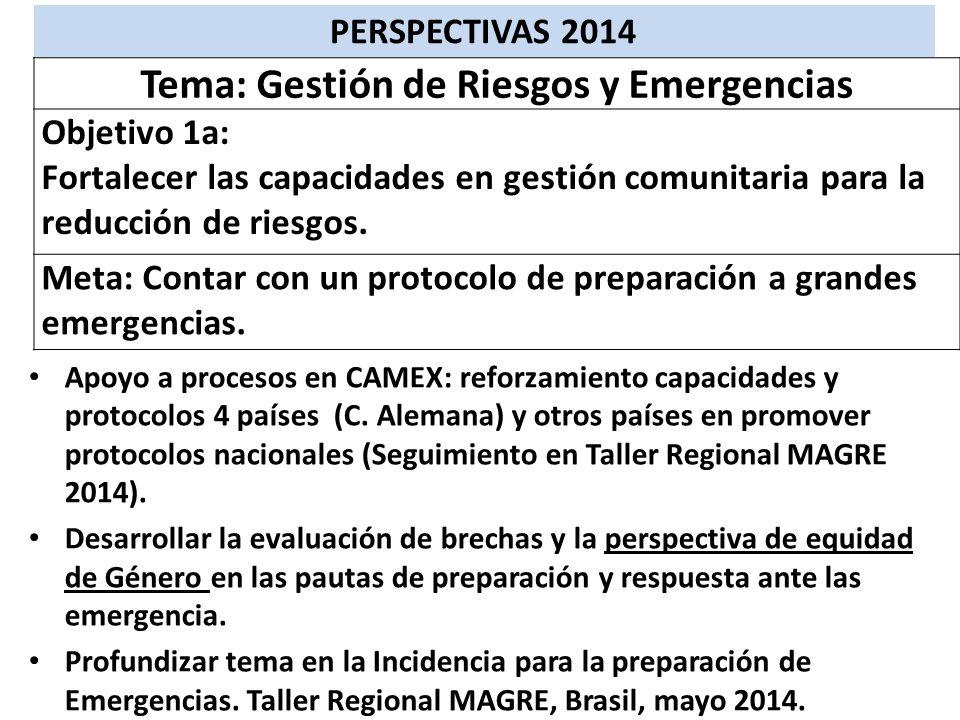 Apoyo a procesos en CAMEX: reforzamiento capacidades y protocolos 4 países (C. Alemana) y otros países en promover protocolos nacionales (Seguimiento