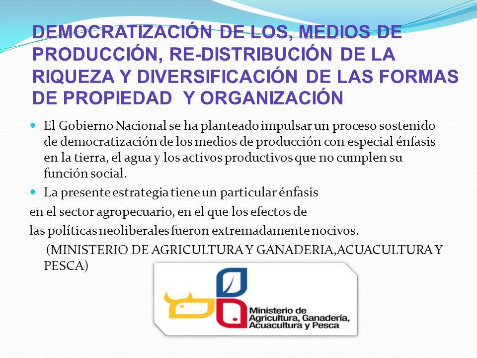 DEMOCRATIZACIÓN DE LOS, MEDIOS DE PRODUCCIÓN, RE-DISTRIBUCIÓN DE LA RIQUEZA Y DIVERSIFICACIÓN DE LAS FORMAS DE PROPIEDAD Y ORGANIZACIÓN El Gobierno Na