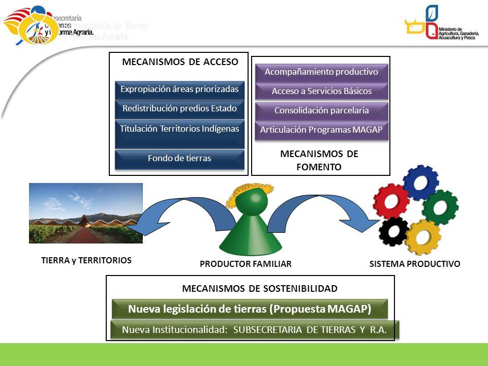 Nueva Institucionalidad: SUBSECRETARIA DE TIERRAS Y R.A. Fondo de tierras Acompañamiento productivo Redistribución predios Estado Titulación Territori