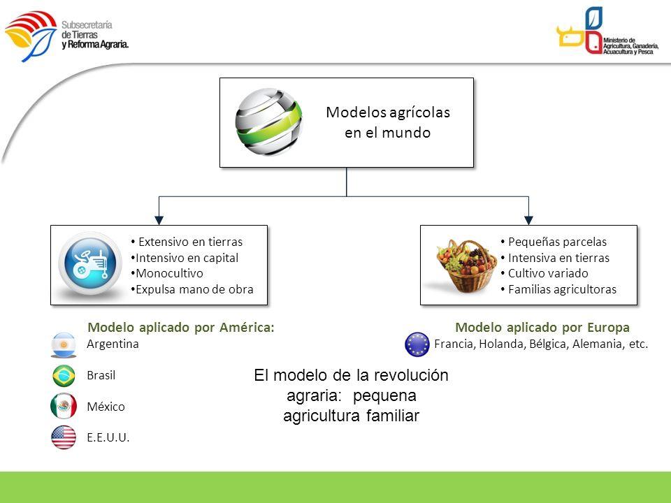 Modelos agrícolas en el mundo Extensivo en tierras Intensivo en capital Monocultivo Expulsa mano de obra Pequeñas parcelas Intensiva en tierras Cultiv