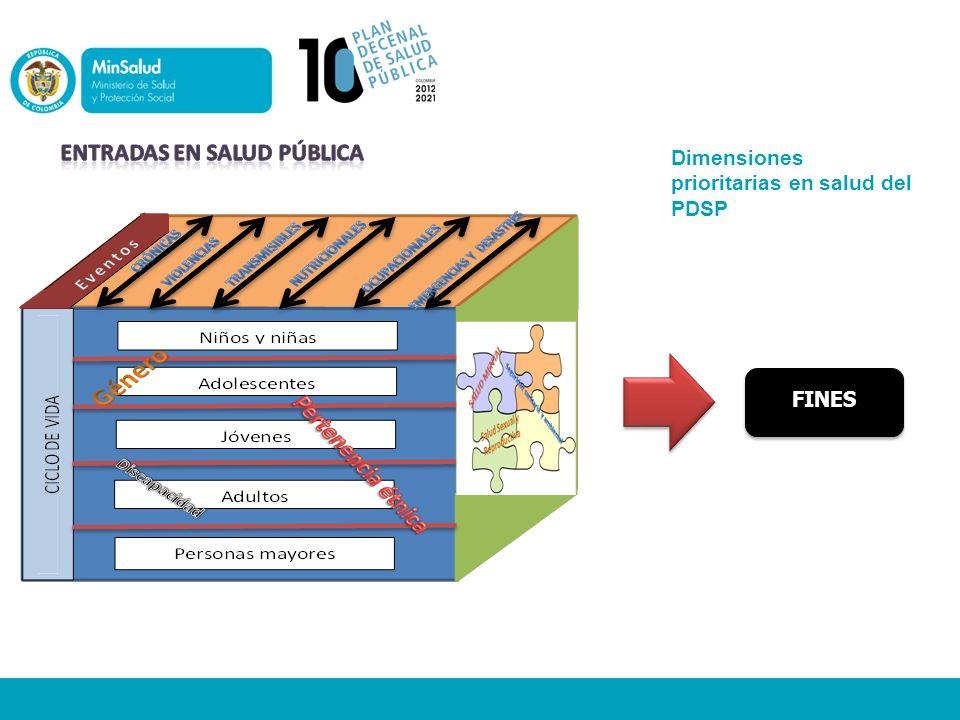 Dimensiones prioritarias en salud del PDSP FINES