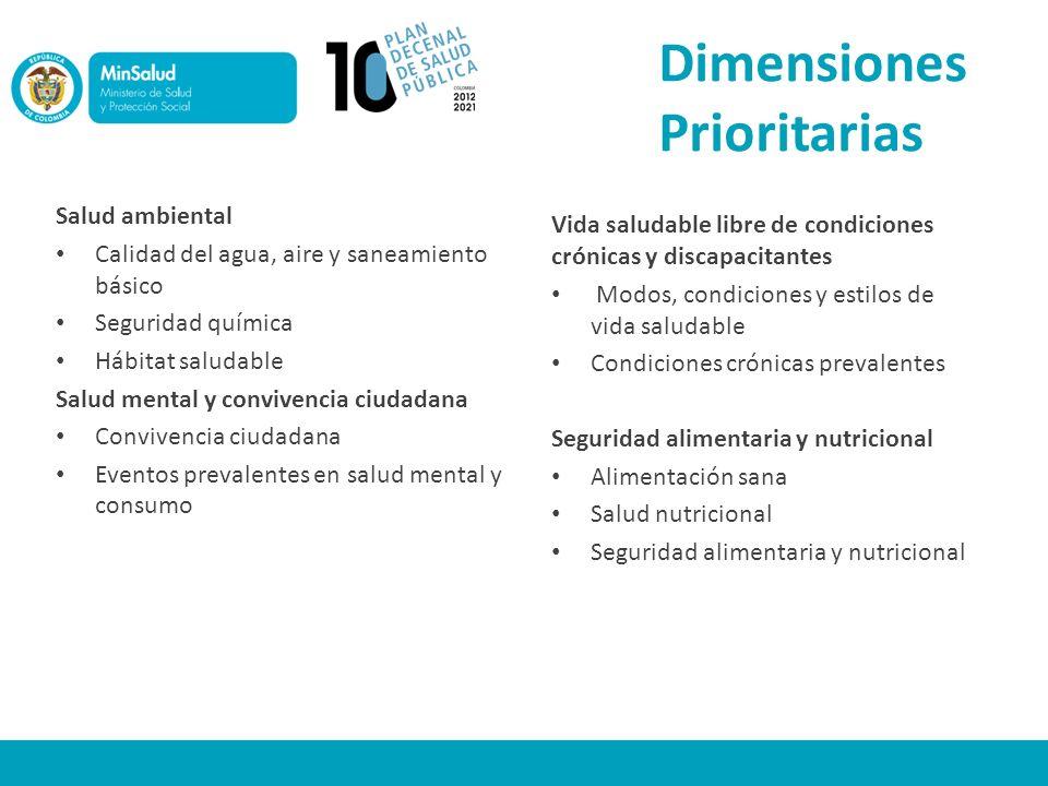 Dimensiones Prioritarias Salud ambiental Calidad del agua, aire y saneamiento básico Seguridad química Hábitat saludable Salud mental y convivencia ci