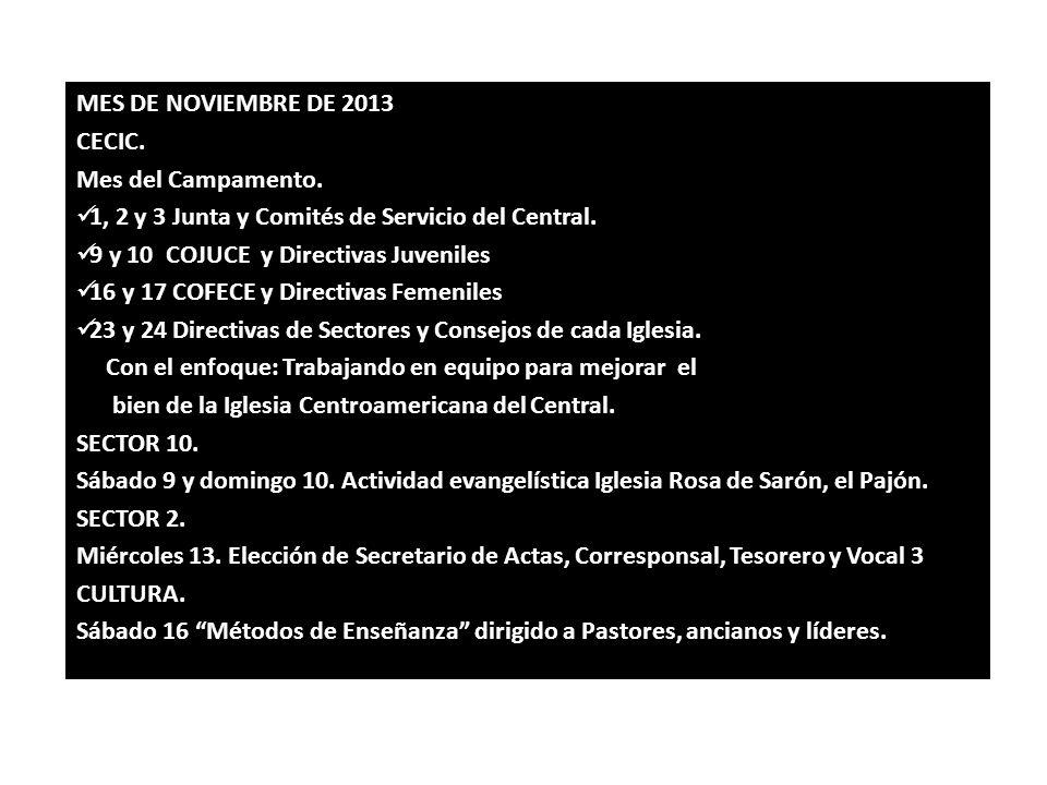 MES DE NOVIEMBRE DE 2013 CECIC. Mes del Campamento. 1, 2 y 3 Junta y Comités de Servicio del Central. 9 y 10 COJUCE y Directivas Juveniles 16 y 17 COF