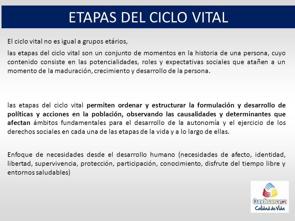 ETAPAS DEL CICLO VITAL El ciclo vital no es igual a grupos etários, las etapas del ciclo vital son un conjunto de momentos en la historia de una perso