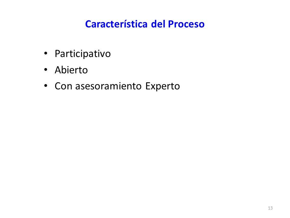 Característica del Proceso Participativo Abierto Con asesoramiento Experto 13