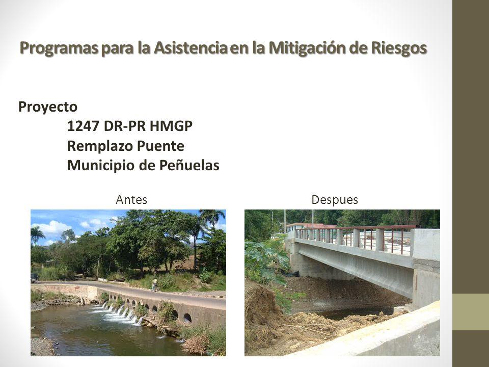 Programas para la Asistencia en la Mitigación de Riesgos Proyecto 1247 DR-PR HMGP Remplazo Puente Municipio de Peñuelas AntesDespues