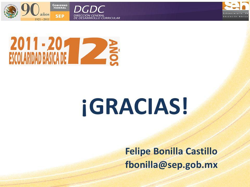 ¡GRACIAS! Felipe Bonilla Castillo fbonilla@sep.gob.mx