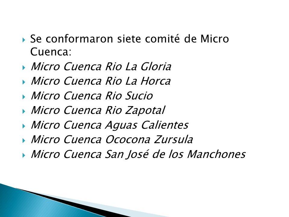 Propuesta de Reglamento para conformación de Comité de Cuencas, Sub Cuencas y Micro Cuencas.