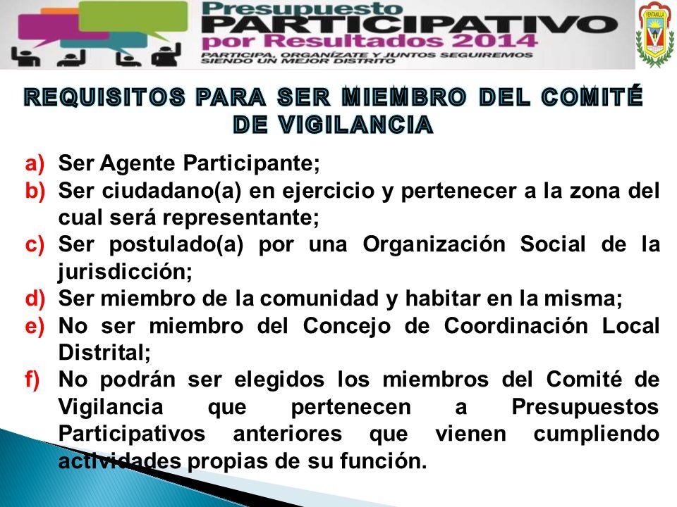 a)Ser Agente Participante; b)Ser ciudadano(a) en ejercicio y pertenecer a la zona del cual será representante; c)Ser postulado(a) por una Organización