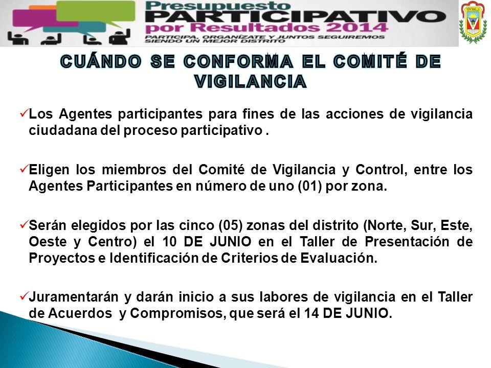 Los Agentes participantes para fines de las acciones de vigilancia ciudadana del proceso participativo. Eligen los miembros del Comité de Vigilancia y