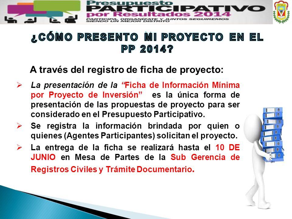 La presentación de la Ficha de Información Mínima por Proyecto de Inversión es la única forma de presentación de las propuestas de proyecto para ser c