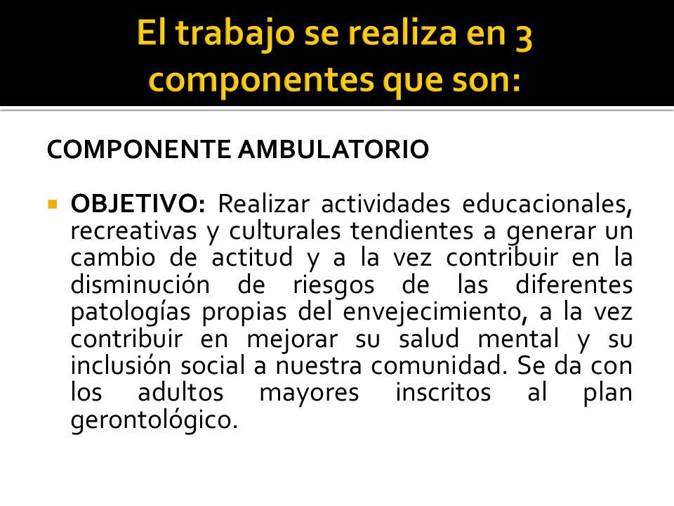 COMPONENTE AMBULATORIO OBJETIVO: Realizar actividades educacionales, recreativas y culturales tendientes a generar un cambio de actitud y a la vez con