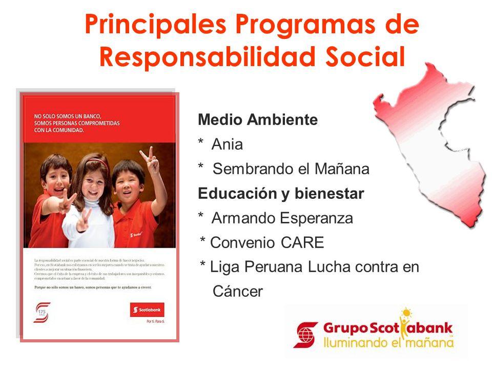 Medio Ambiente * Ania * Sembrando el Mañana Educación y bienestar * Armando Esperanza * Convenio CARE * Liga Peruana Lucha contra en Cáncer Principale
