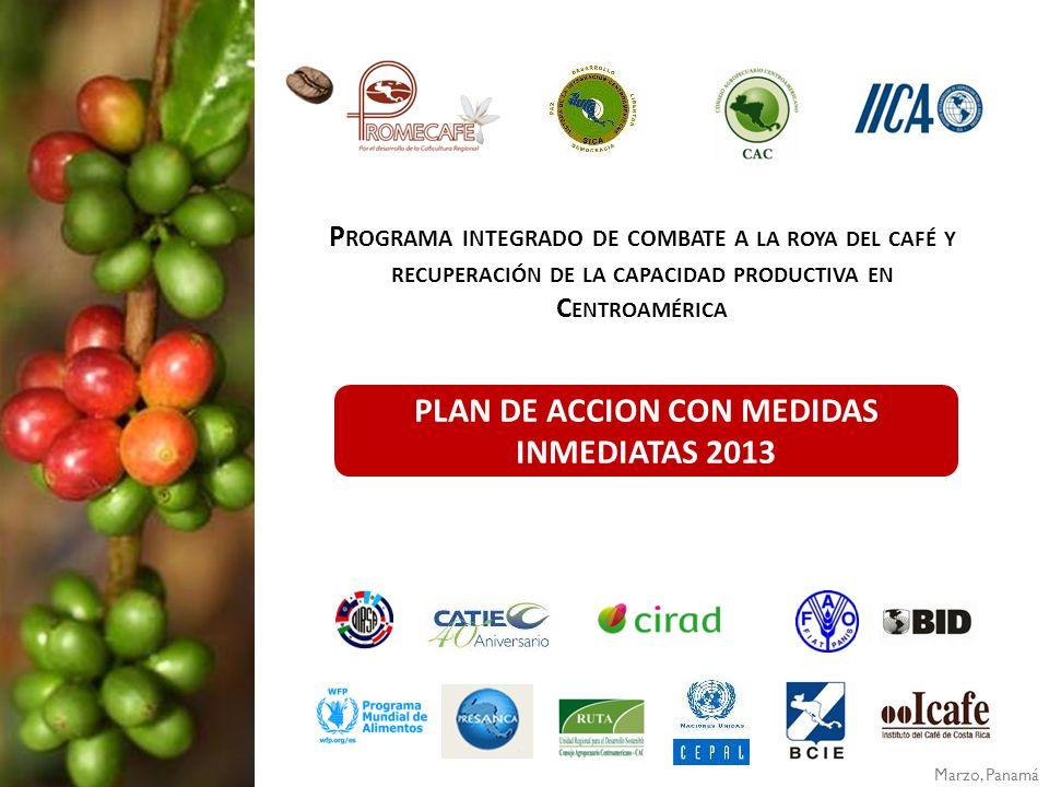 Objetivo general Contribuir al combate integrado de la roya del café y a la recuperación de la capacidad productiva de los cafetales, con acciones inmediatas que faciliten soluciones para los productores y permitan la sostenibilidad económica, social y ambiental de la caficultura regional.