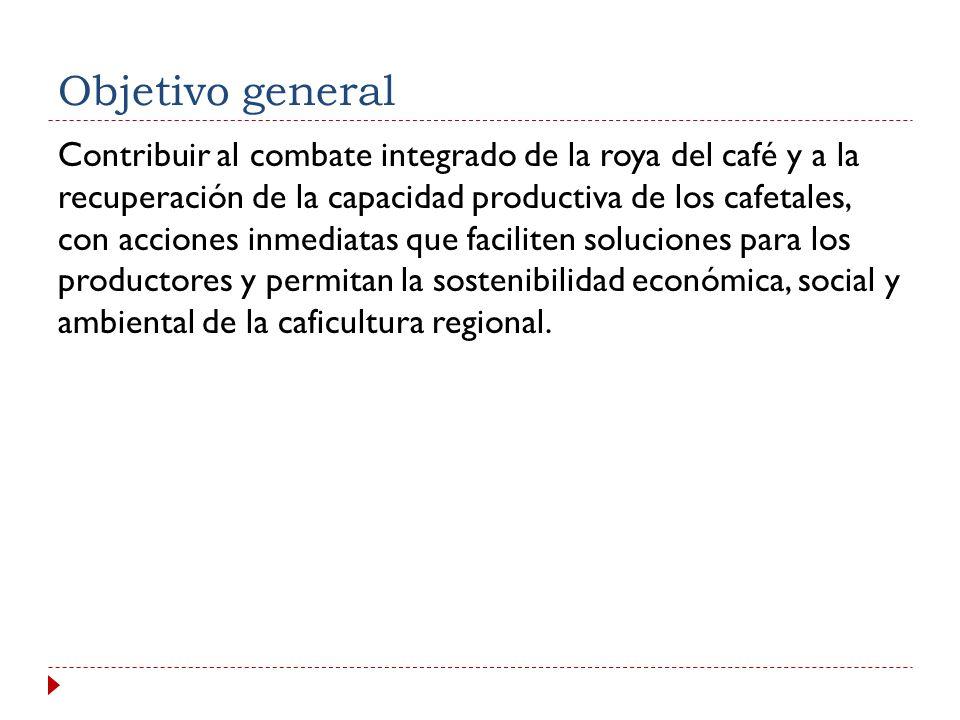 El Plan de Acción * Propicia el enfoque regional para lograr efectos superiores a los efectos individuales en cada país * Busca minimizar los impactos