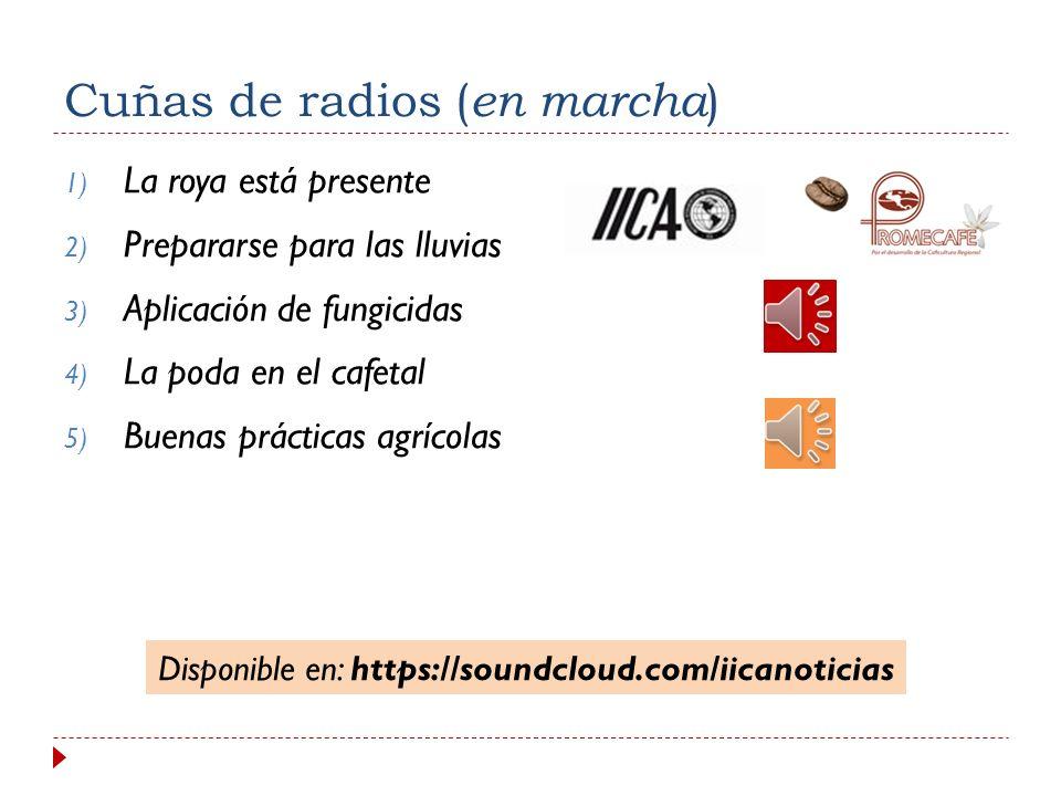 Manejo integrado de la roya 4. Programa regional de comunicación a) Productos de comunicación 5. Red regional de comunicadores 6. Portal de roya (en m