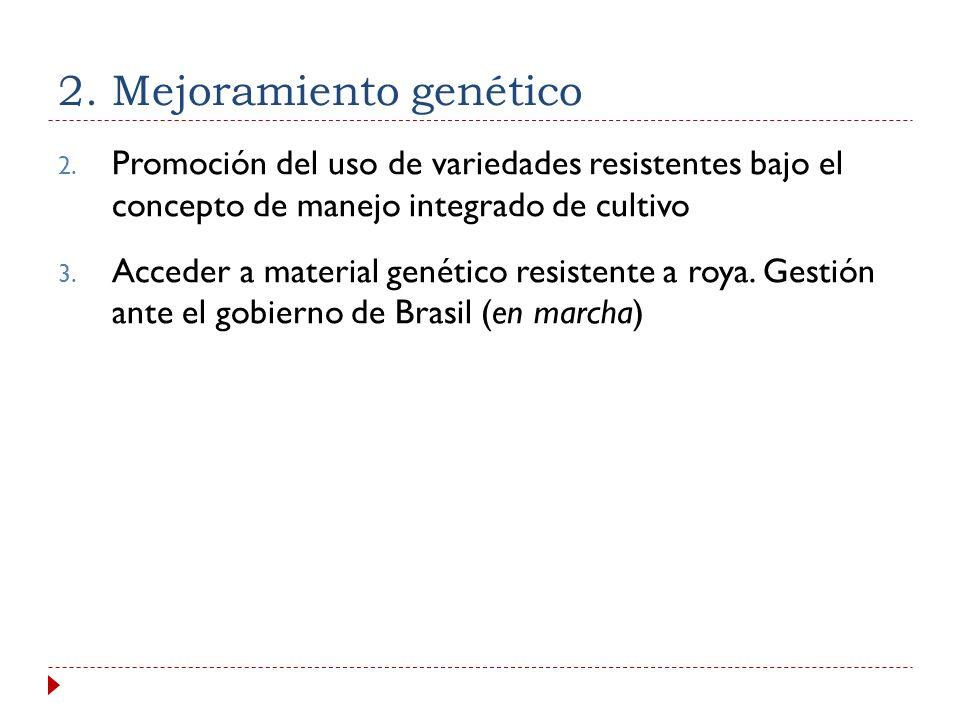 2. Mejoramiento genético 1. Fortalecimiento Programa de Mejoramiento Genético: a) Diagnóstico rápido de materiales, áreas y capacidad de producción de