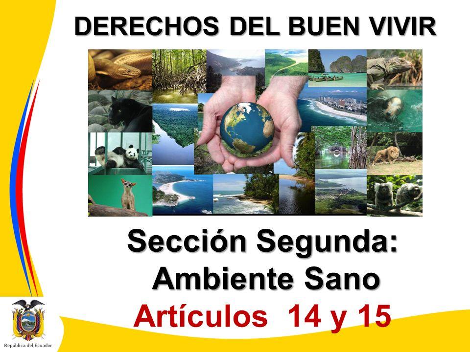 DERECHOS DEL BUEN VIVIR Sección Segunda: Ambiente Sano Ambiente Sano Artículos 14 y 15