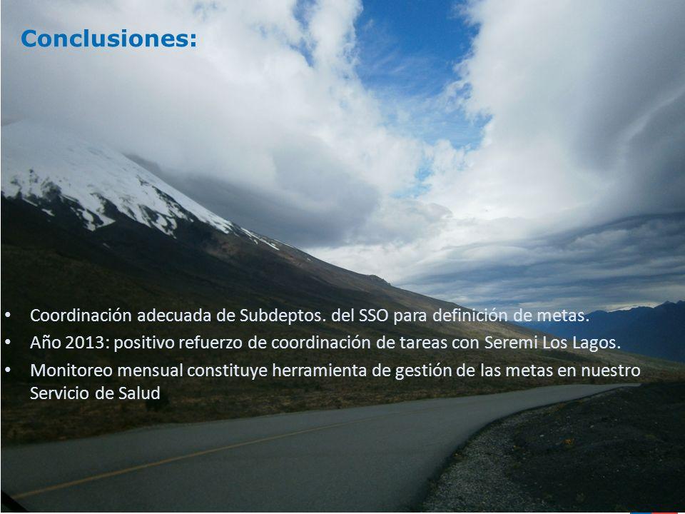 Conclusiones: Coordinación adecuada de Subdeptos. del SSO para definición de metas. Año 2013: positivo refuerzo de coordinación de tareas con Seremi L