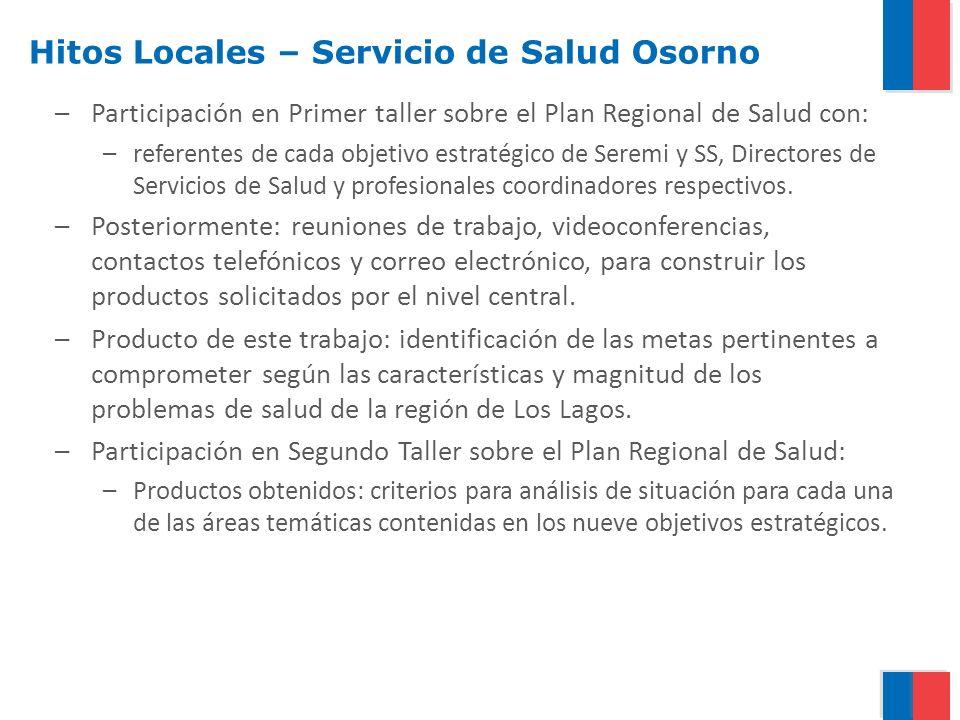 –Participación en Primer taller sobre el Plan Regional de Salud con: –referentes de cada objetivo estratégico de Seremi y SS, Directores de Servicios