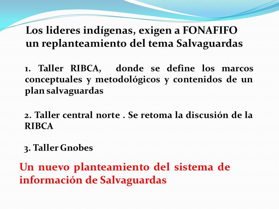 Los lideres indígenas, exigen a FONAFIFO un replanteamiento del tema Salvaguardas 1. Taller RIBCA, donde se define los marcos conceptuales y metodológ