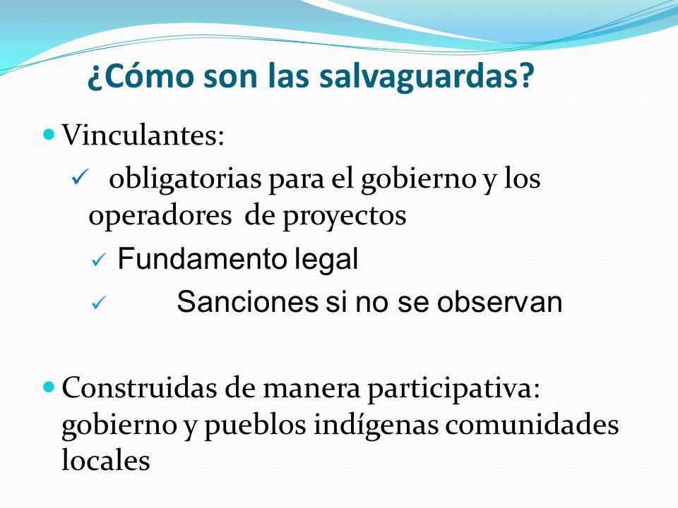 ¿Cómo son las salvaguardas? Vinculantes: obligatorias para el gobierno y los operadores de proyectos Fundamento legal Sanciones si no se observan Cons
