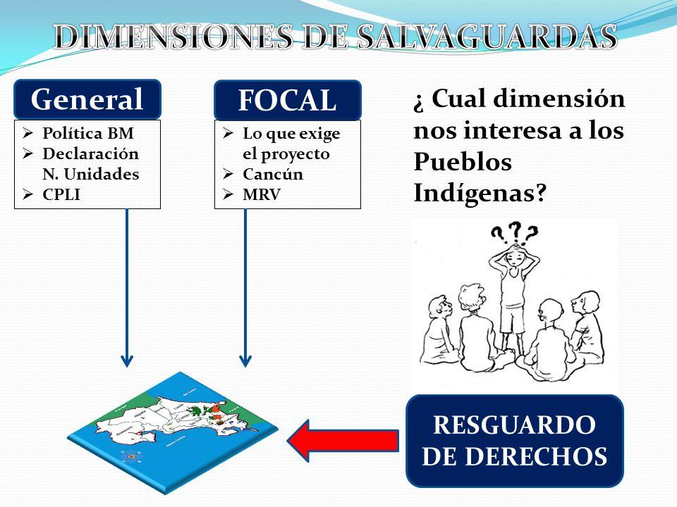 General FOCAL RESGUARDO DE DERECHOS Política BM Declaración N. Unidades CPLI Lo que exige el proyecto Cancún MRV ¿ Cual dimensión nos interesa a los P