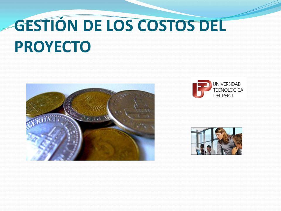 Introducción En muchas organizaciones, la predicción y análisis del desempeño financiero probable del producto del proyecto se llevan a cabo fuera del proyecto.