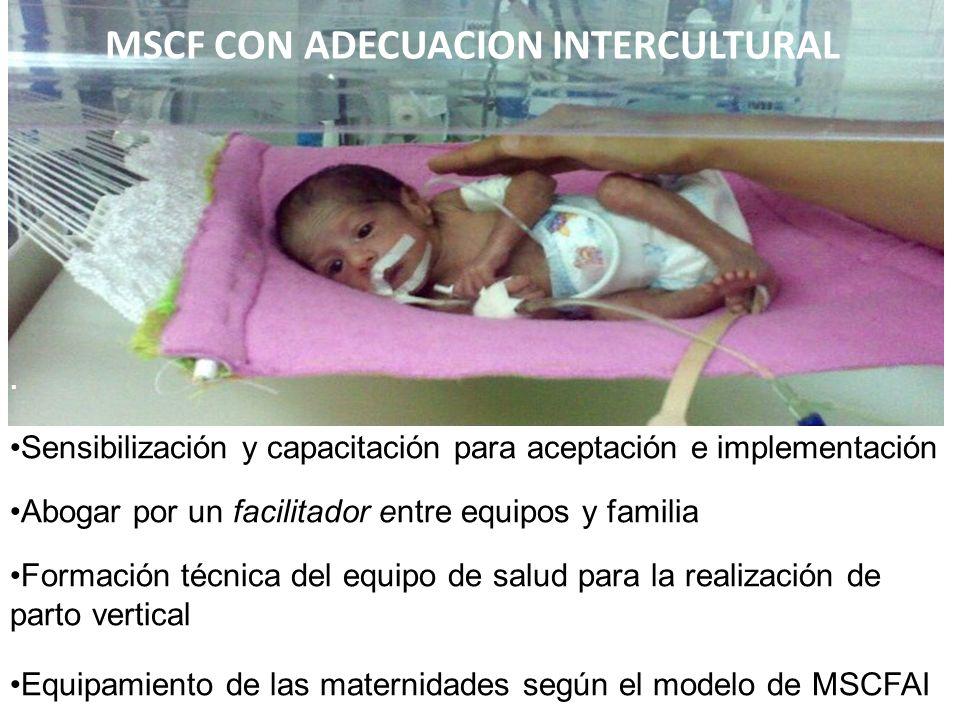 MSCF CON ADECUACION INTERCULTURAL.
