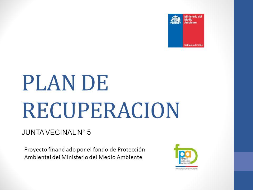 PLAN DE RECUPERACION JUNTA VECINAL N° 5 Proyecto financiado por el fondo de Protección Ambiental del Ministerio del Medio Ambiente
