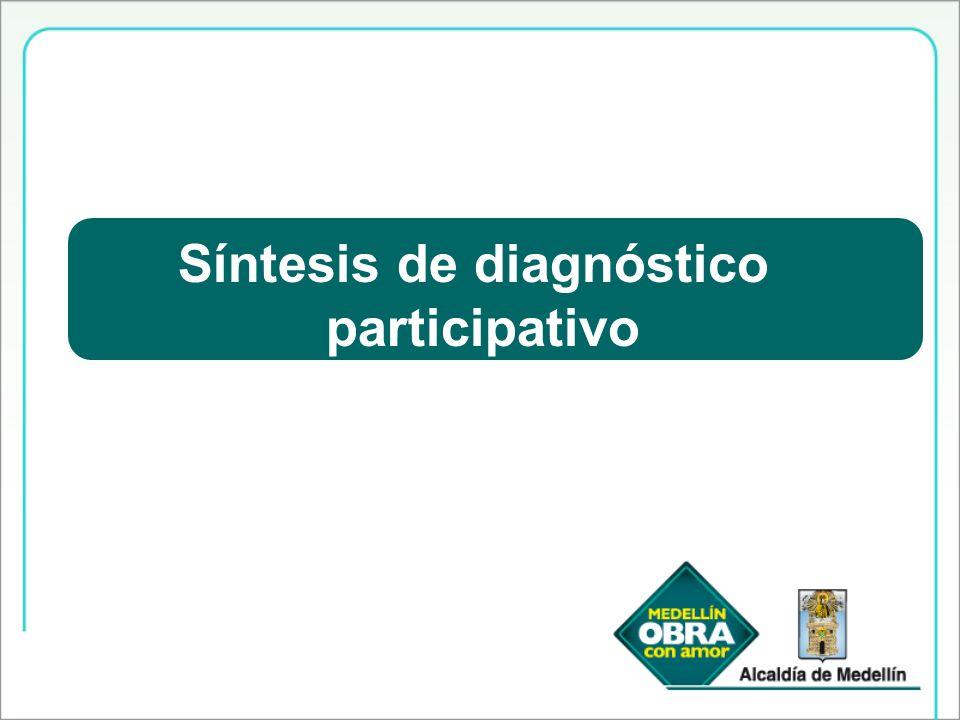 Síntesis de diagnóstico participativo