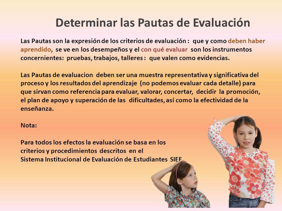 Determinar las Pautas de Evaluación Las Pautas son la expresión de los criterios de evaluación : que y como deben haber aprendido, se ve en los desemp