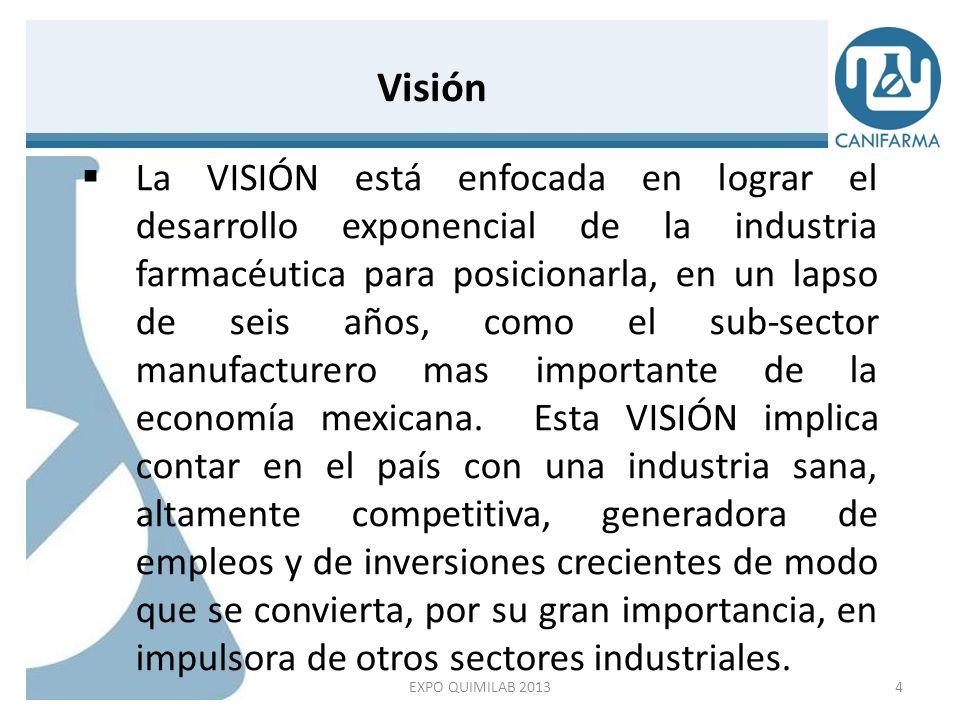 La VISIÓN está enfocada en lograr el desarrollo exponencial de la industria farmacéutica para posicionarla, en un lapso de seis años, como el sub-sect