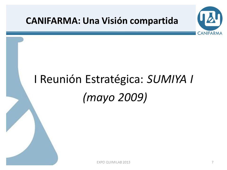 Ejercicio de Alineación Estratégica I Reunión estratégica: SUMIYA I (mayo 2009) Capítulos: 1.