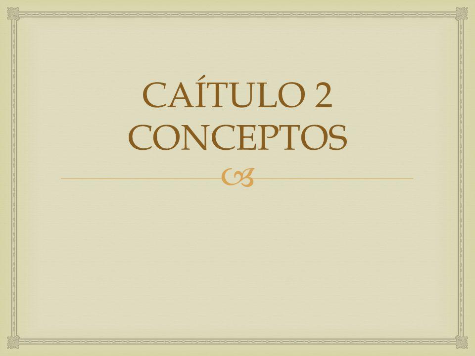 CAÍTULO 2 CONCEPTOS