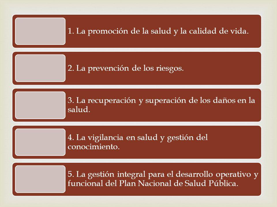 1. La promoción de la salud y la calidad de vida. 2. La prevención de los riesgos. 3. La recuperación y superación de los daños en la salud. 4. La vig