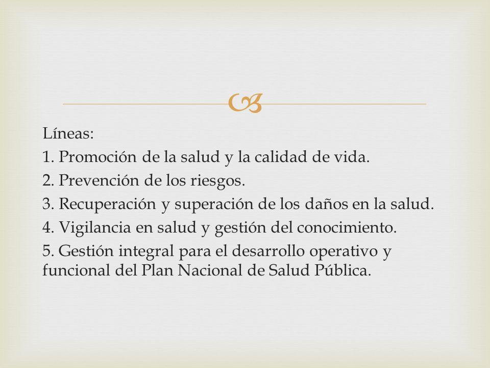 Líneas: 1. Promoción de la salud y la calidad de vida. 2. Prevención de los riesgos. 3. Recuperación y superación de los daños en la salud. 4. Vigilan