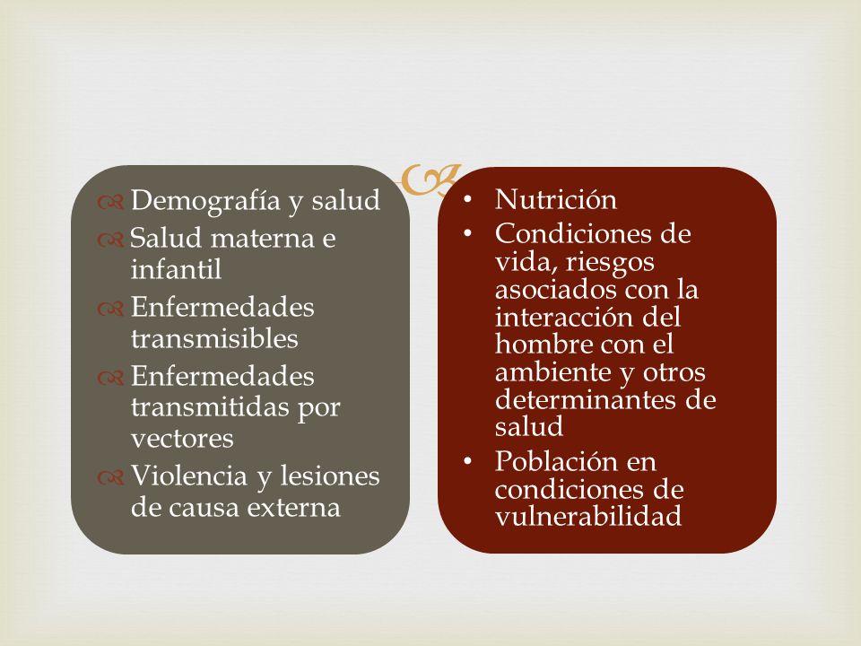 Demografía y salud Salud materna e infantil Enfermedades transmisibles Enfermedades transmitidas por vectores Violencia y lesiones de causa externa Nu