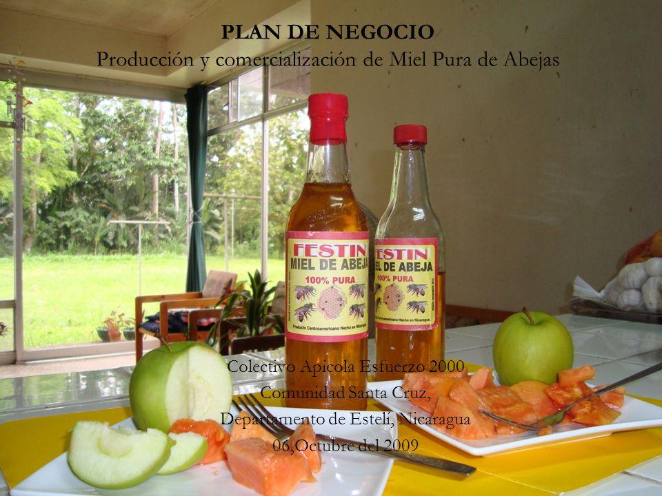 Tipo de Plan de Negocio Microempresa campesina, Sector Agroindustria Colectivo Apícola Esfuerzo 2000, Compuesto por 10 hombres y 6 compañeras mujeres.