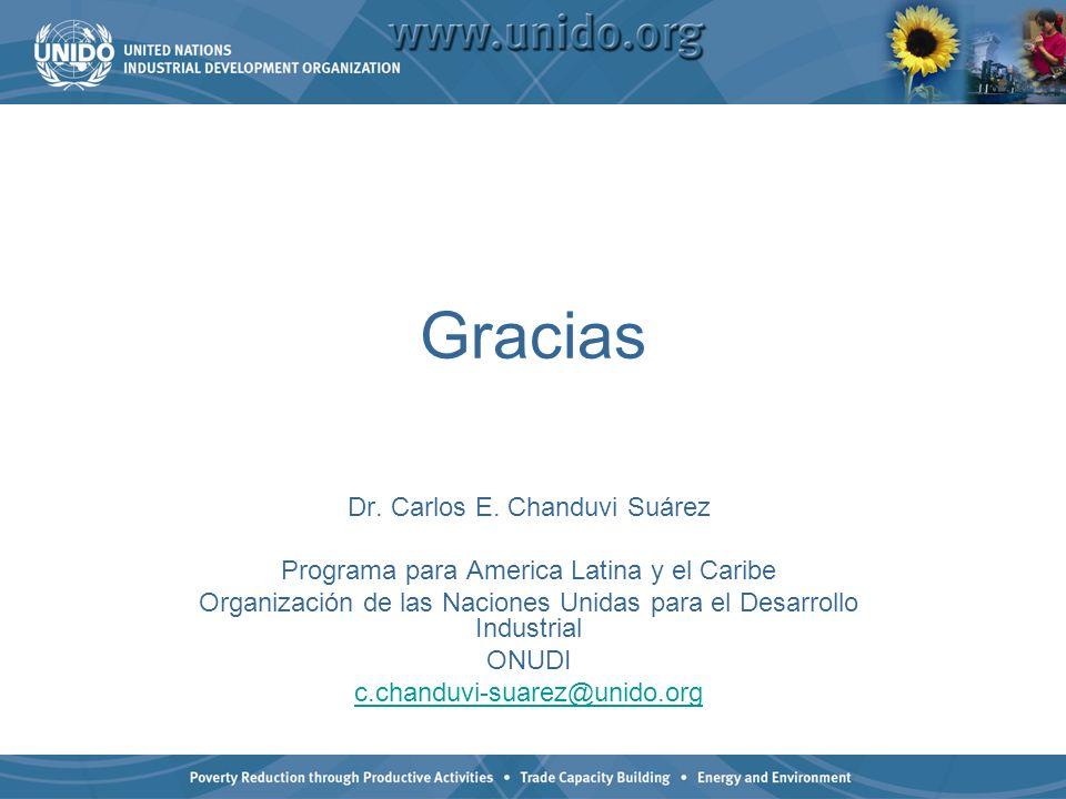 Gracias Dr. Carlos E. Chanduvi Suárez Programa para America Latina y el Caribe Organización de las Naciones Unidas para el Desarrollo Industrial ONUDI