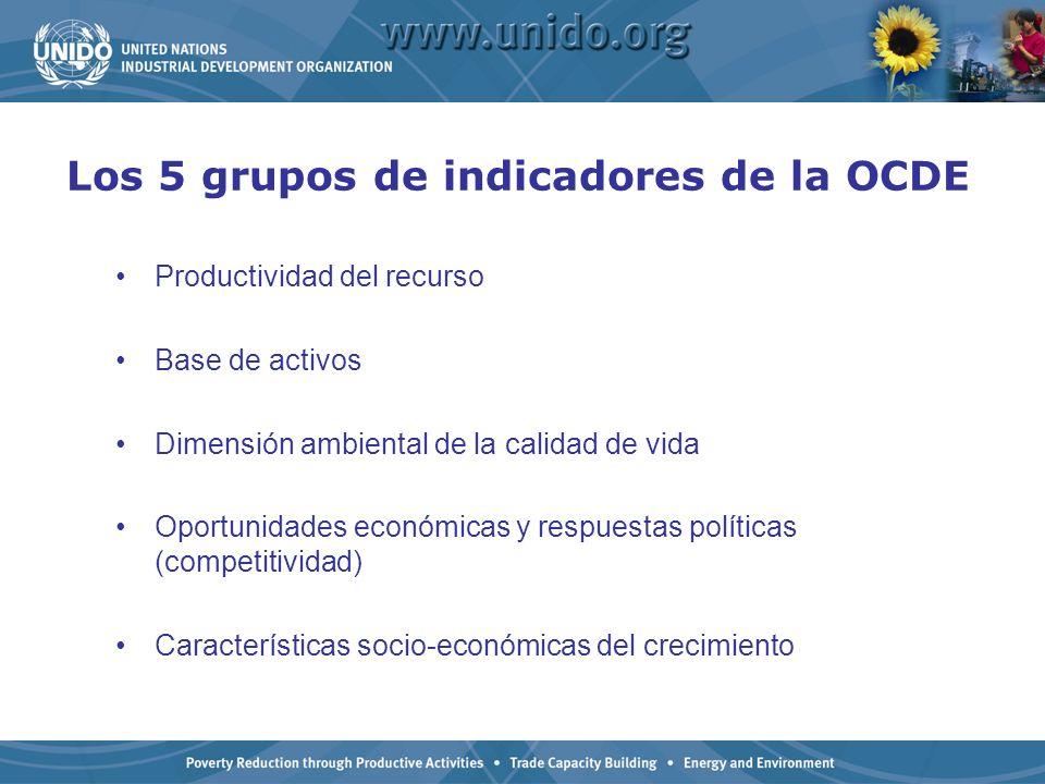 Los 5 grupos de indicadores de la OCDE Productividad del recurso Base de activos Dimensión ambiental de la calidad de vida Oportunidades económicas y